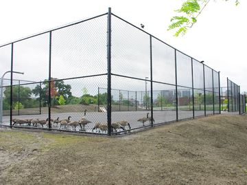New court located in Bordeleau Park