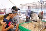 PoultryFest 2016