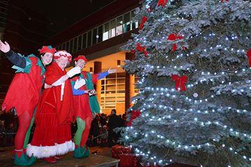 Aurora Christmas Tree Lighting and Fun