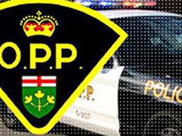 OPP investigate crash