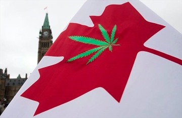 A Canadian flag with a cannabis leaf flies on Parliament Hill during the 4/20 protest, Monday, April 20, 2015 in Ottawa. A new Statistics Canada survey has found about 1.4 million Canadians reported they had been a passenger in a vehicle driven by someone who had consumed cannabis in the previous two hours. THE CANADIAN PRESS/Adrian Wyld