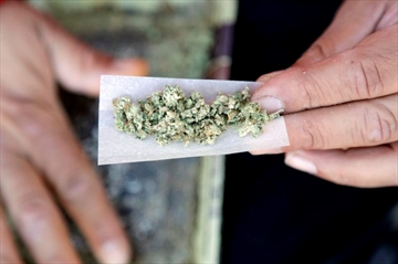 Pediatricians warn against pot use: Not your dad's marijuana-Image1