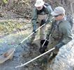 Brook trout recovery effort