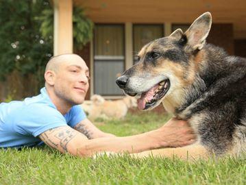 Matthew Johnson, 37, is spending $70,000 to clone his dog Woofie