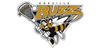 Buzz heads back to Oakville down 2-0 in Jr. B lacrosse conference final