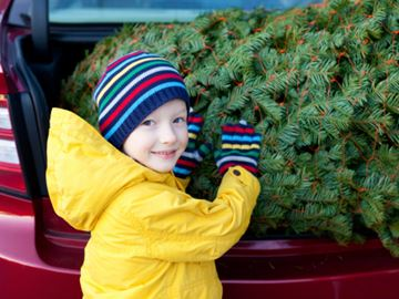 Top spots to buy a Christmas tree in Simcoe County and Meaford