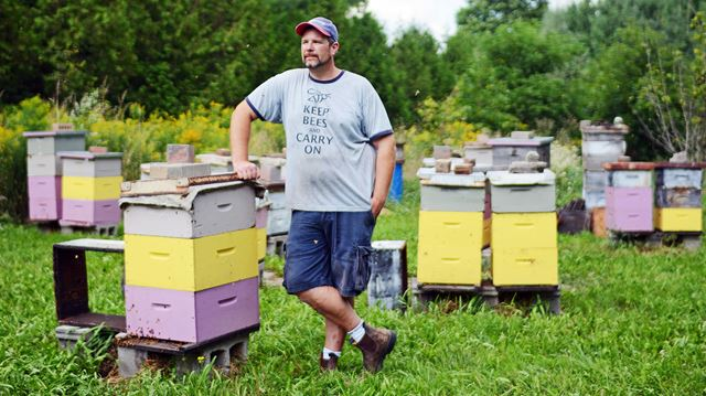 Beekeeper takes action