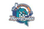 Burlington Barracudas