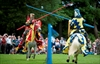 English campaign for jousting to feature at Olympics-Image1