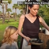 Angelina Jolie cooks tarantulas for her children to eat-Image1