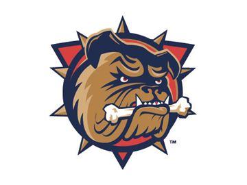 OHL Hamilton Bulldogs