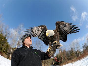 Sam Trentadue Ontario Falconry Centre