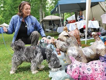 Uxbridge Lions Club presents Art in the Park