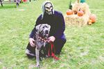 Mutts & Monsters in Oakville pulling for The Dog Rescuers Inc.