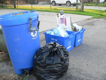Hamilton's waste collection service under review