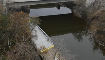 Council unanimously backed Mayor Fred Eisenberger's call Wednesday to not pursue a probe into who leaked confidential city documents to The Spectator about the massive Chedoke Creek sewage spill.