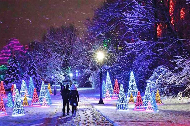 Niagara Winter Festival Of Lights Enjoy The Stunning Display Of Family Friendly Festive Lights