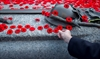 Remembrance Day bill gets rough ride-Image1