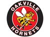 Another Field day for PWHL-leading Oakville Hornets