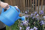 Innisfil council invokes outdoor watering restrictions