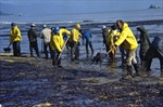 Finding California oil spill's cause could take months-Image1