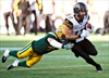 Tiger-Cats come from behind to beat Eskimos 37-31-Image1