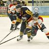 Midland teams fail to advance at regional Silver Stick