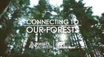 PROMOTING FORESTRY