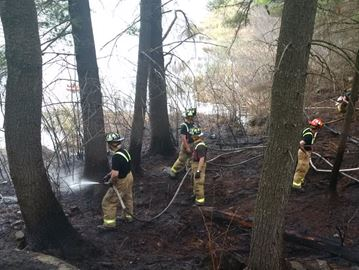 Firefighters contain Carp brush fire