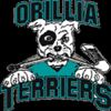 Good weekend for Orillia bantam A Terriers
