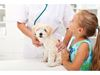 How to know if your pet is sick