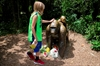 'Mommy loves you!': Boy rescued after gorilla is shot at zoo-Image5