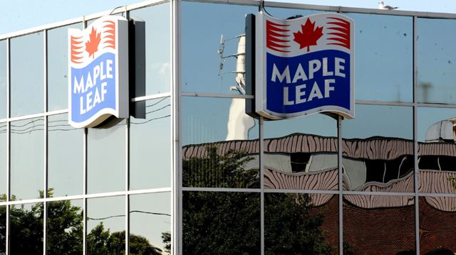 maple leaf foods Maple leaf foods inc (tsx:mfi) stock continued its plunge after it released its first-quarter results in early may.