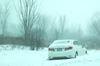 Snow day in Niagara