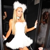 Paris Hilton dresses up as her dog for Halloween-Image1