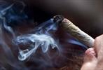 Parents prep for legalized marijuana-Image1