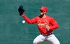 Cardinals' Schafer aims to be 2-way utility player-Image1