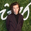 Harry Styles plans charity work-Image1