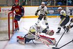 The Trenton Golden Hawks have five players in the All-Star teams