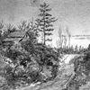 Muskoka road, circa 1870s