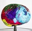 Brain Project Kim Kardashian