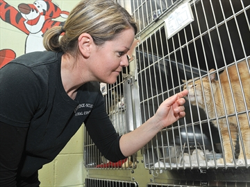 Uxbridge-Scugog animal shelter moves forward