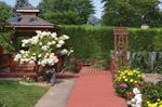 North St. Catharines garden a 30-year labour of love