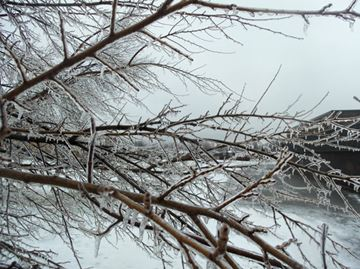Niagara under freezing rain warning