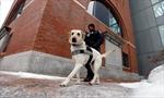 Tsarnaev goes on trial in Boston Marathon bombing-Image1