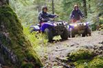 ATVs out on trails