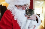 Paws by Claus: Santa delivers for animal shelter-Image1