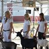 Goat club holds its annual achievement day