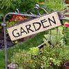 Ten easy tips for having a great vegetable garden this summer