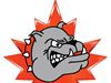 Halton Hills Jr. Bs score 14-12 win against Brampton